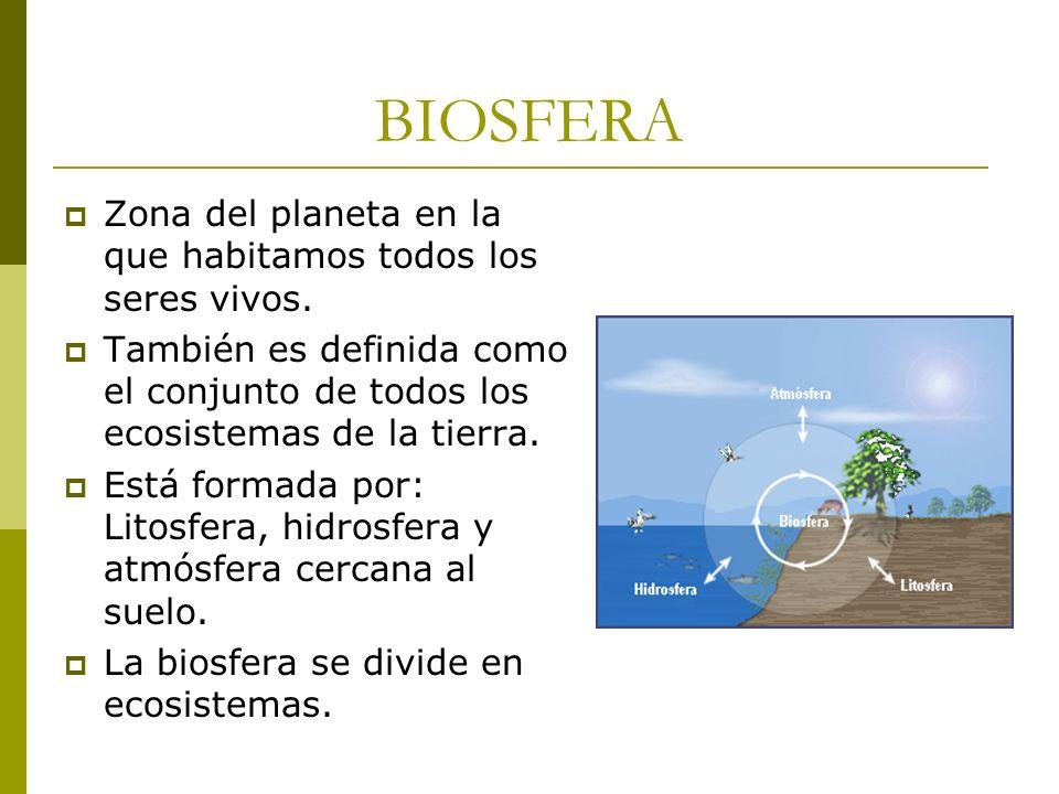 BIOSFERA Zona del planeta en la que habitamos todos los seres vivos.