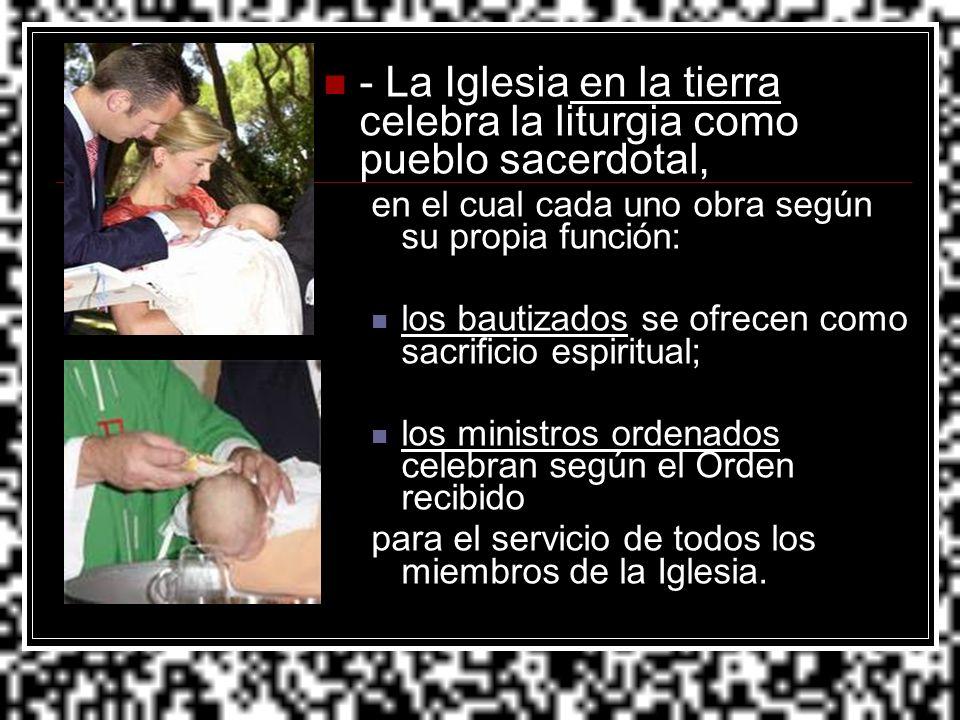 - La Iglesia en la tierra celebra la liturgia como pueblo sacerdotal,