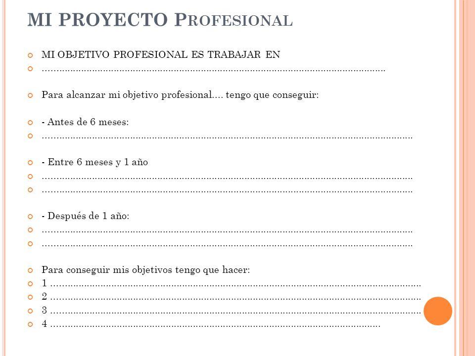 MI PROYECTO Profesional