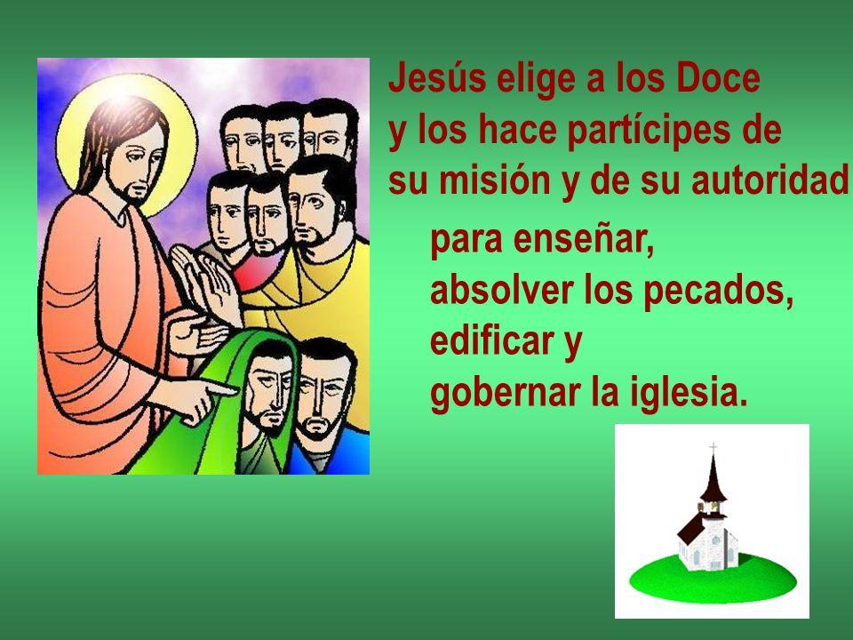 Jesús elige a los Doce y los hace partícipes de. su misión y de su autoridad. para enseñar, absolver los pecados,