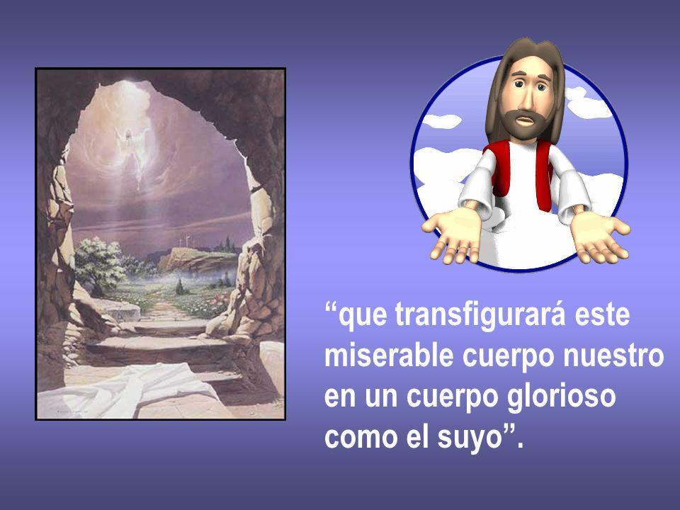 que transfigurará este