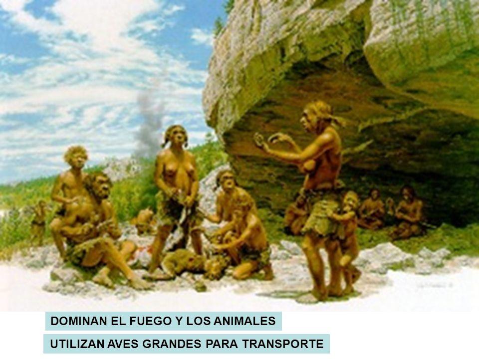 DOMINAN EL FUEGO Y LOS ANIMALES UTILIZAN AVES GRANDES PARA TRANSPORTE
