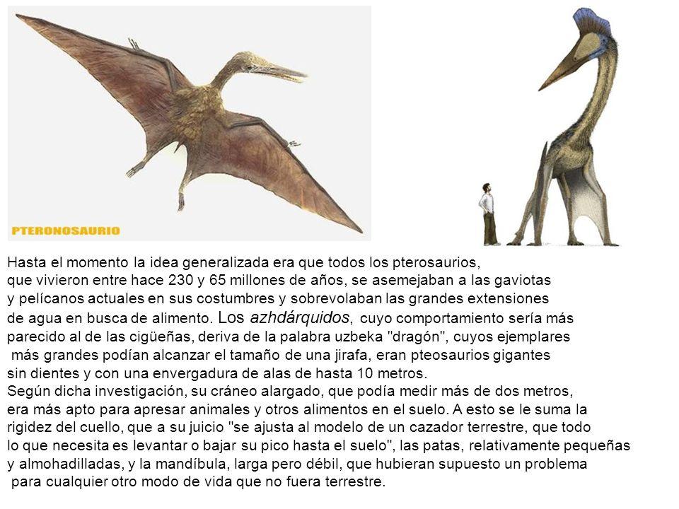 Hasta el momento la idea generalizada era que todos los pterosaurios,