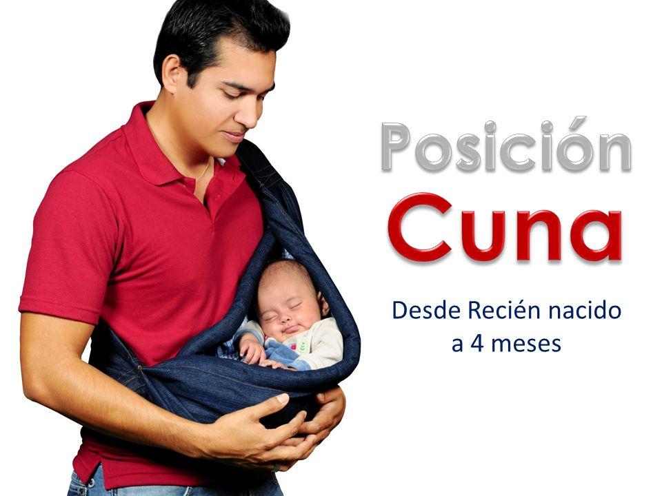 Posición Cuna Desde Recién nacido a 4 meses