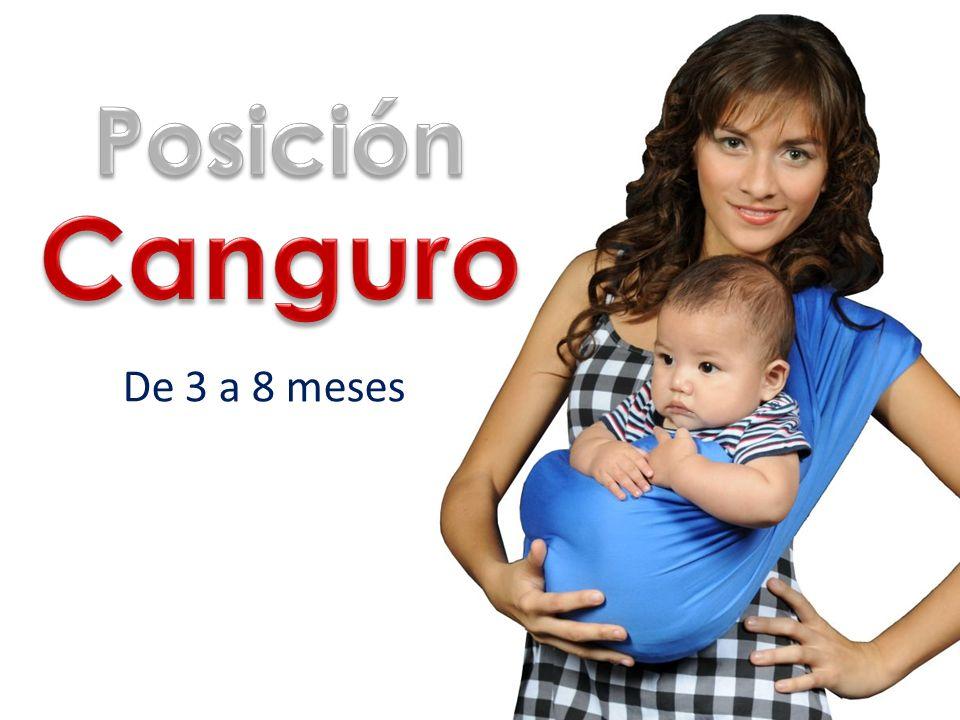 Posición Canguro De 3 a 8 meses