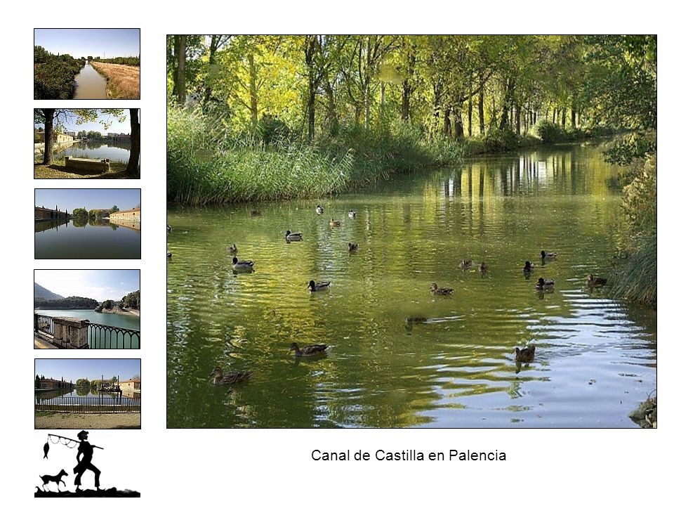 Canal de Castilla en Palencia