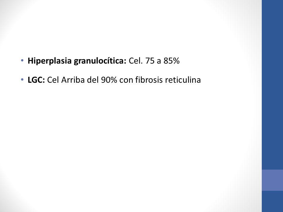Hiperplasia granulocítica: Cel. 75 a 85%