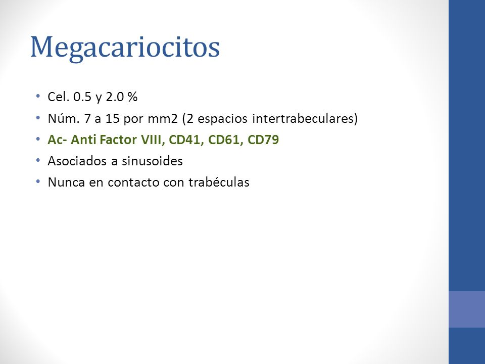 Megacariocitos Cel. 0.5 y 2.0 % Núm. 7 a 15 por mm2 (2 espacios intertrabeculares) Ac- Anti Factor VIII, CD41, CD61, CD79.