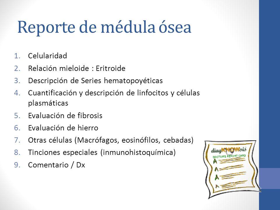 Reporte de médula ósea Celularidad Relación mieloide : Eritroide