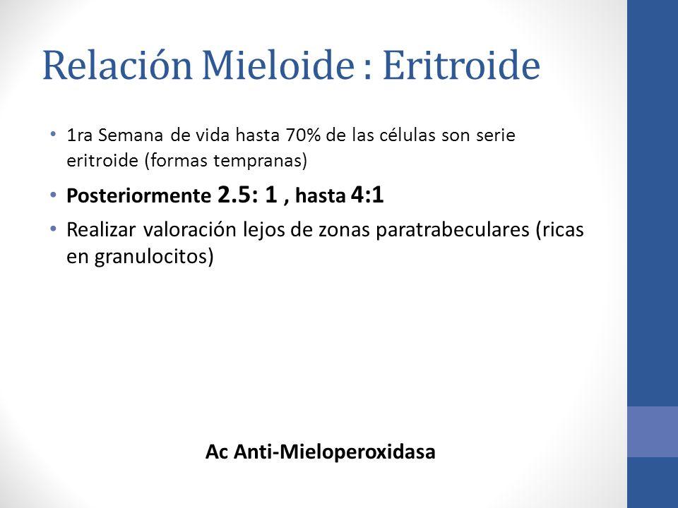 Relación Mieloide : Eritroide