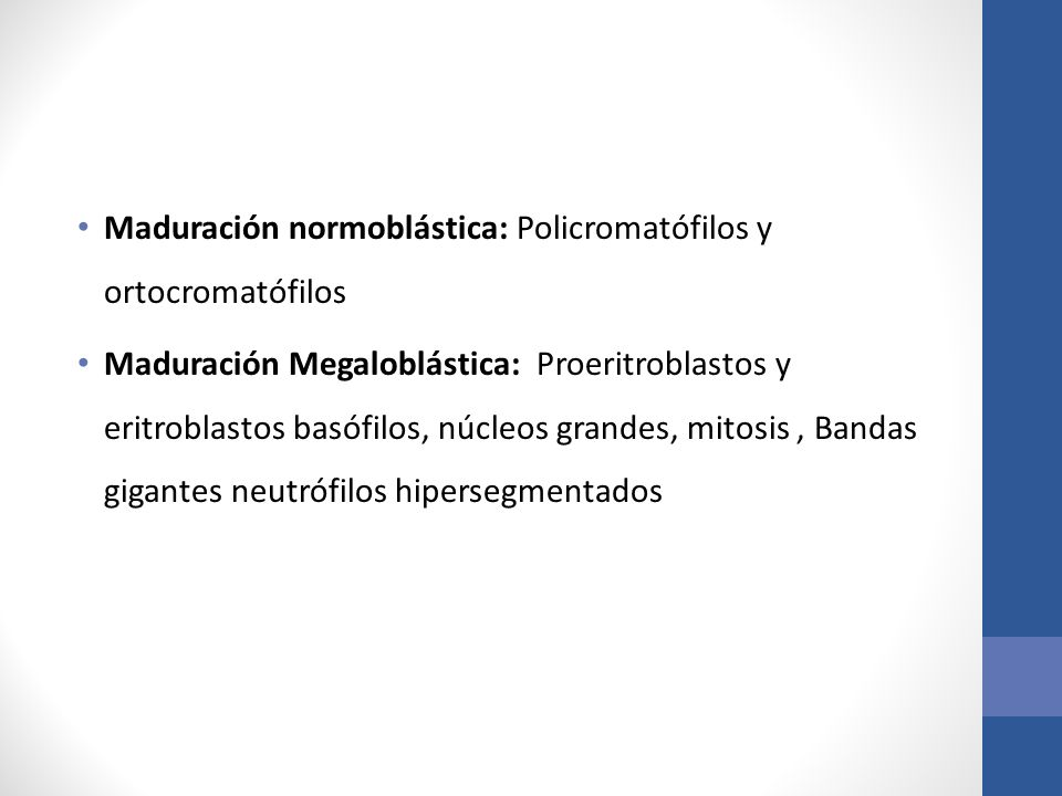 Maduración normoblástica: Policromatófilos y ortocromatófilos