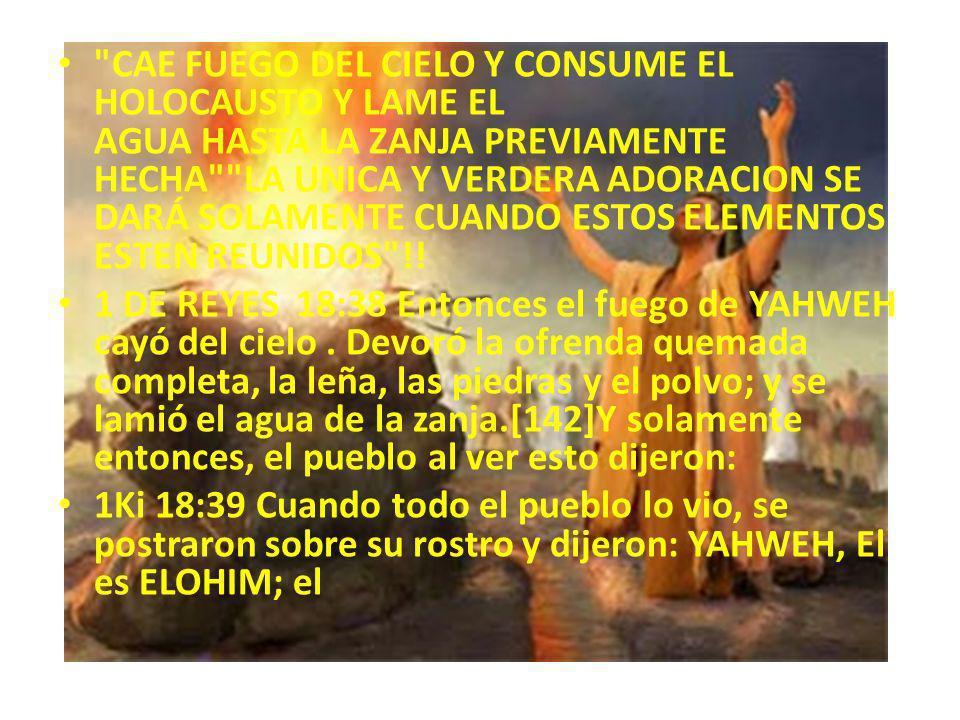 CAE FUEGO DEL CIELO Y CONSUME EL HOLOCAUSTO Y LAME EL AGUA HASTA LA ZANJA PREVIAMENTE HECHA LA UNICA Y VERDERA ADORACION SE DARÁ SOLAMENTE CUANDO ESTOS ELEMENTOS ESTEN REUNIDOS !!