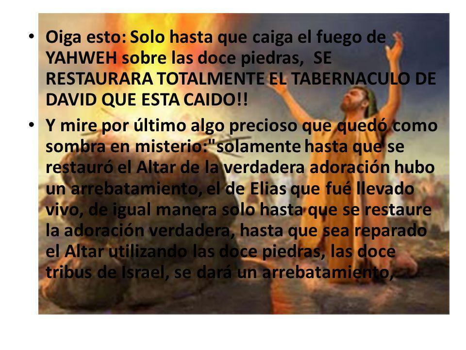 Oiga esto: Solo hasta que caiga el fuego de YAHWEH sobre las doce piedras, SE RESTAURARA TOTALMENTE EL TABERNACULO DE DAVID QUE ESTA CAIDO!!