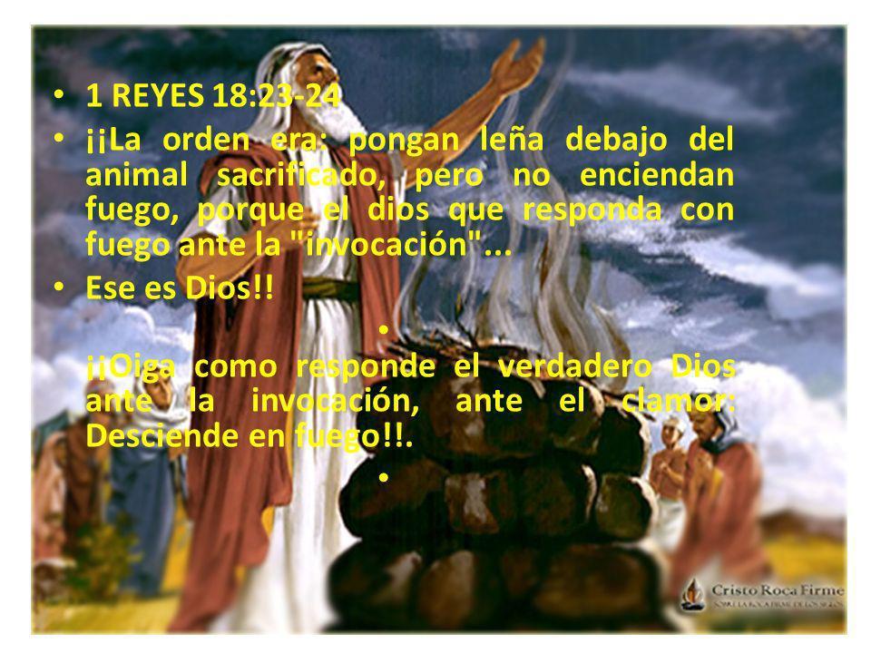 1 REYES 18:23-24