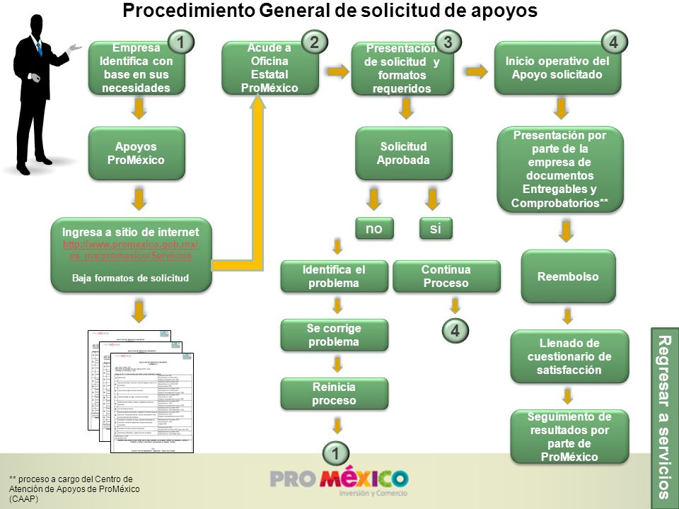 Procedimiento General de solicitud de apoyos