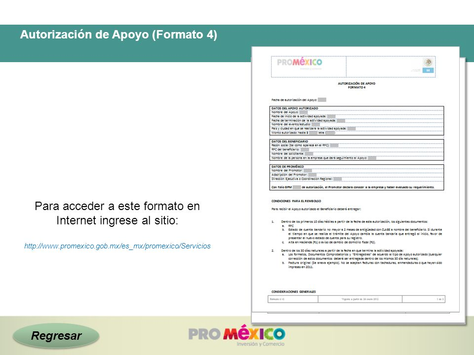 Autorización de Apoyo (Formato 4)