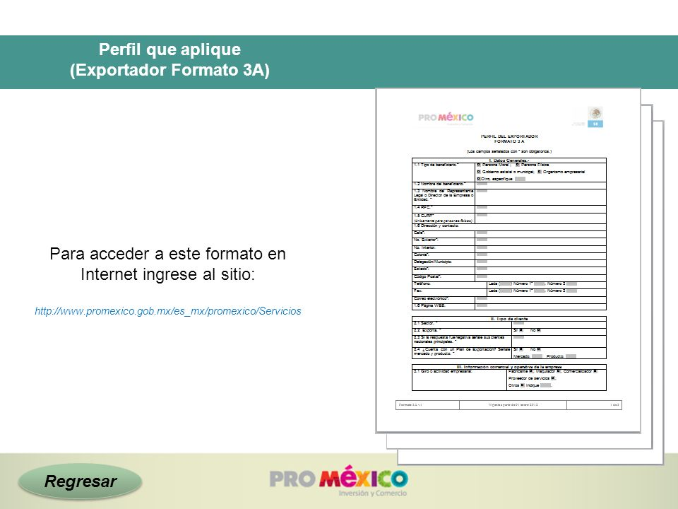 (Exportador Formato 3A)