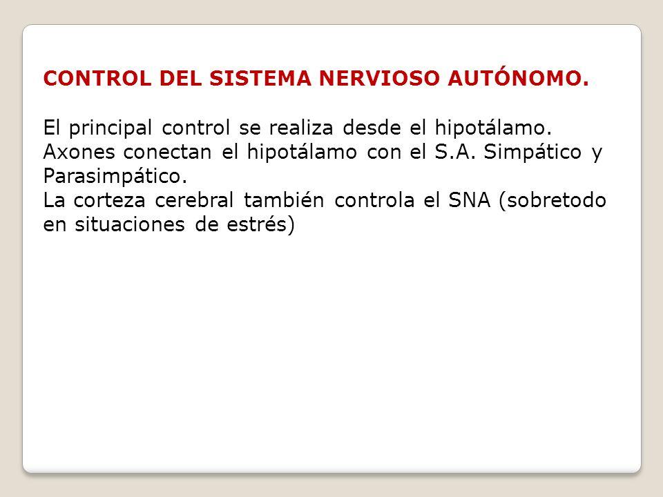 CONTROL DEL SISTEMA NERVIOSO AUTÓNOMO.