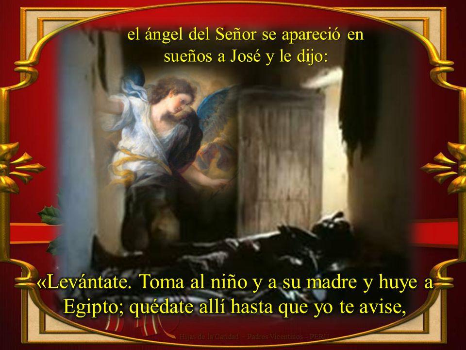 el ángel del Señor se apareció en sueños a José y le dijo: