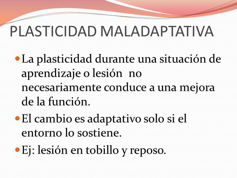 PLASTICIDAD MALADAPTATIVA