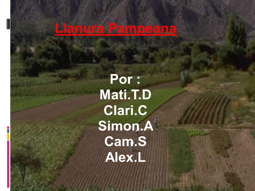 Llanura Pampeana Por : Mati.T.D Clari.C Simon.A Cam.S Alex.L