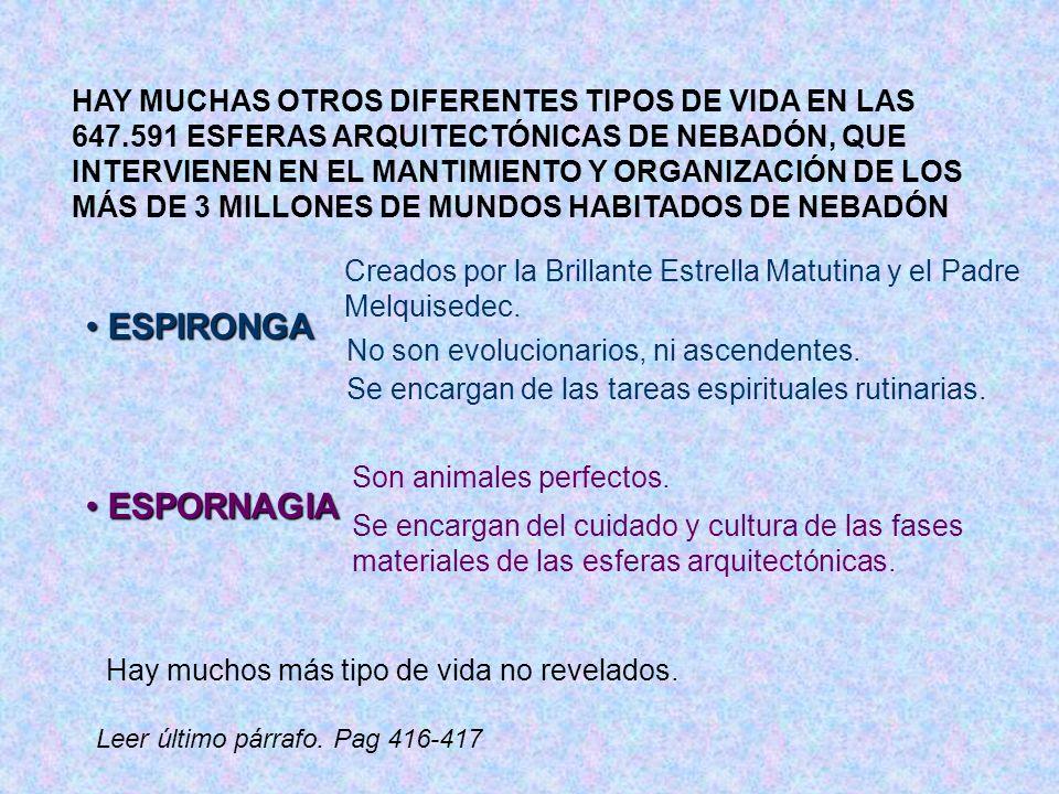 ESPIRONGA ESPORNAGIA HAY MUCHAS OTROS DIFERENTES TIPOS DE VIDA EN LAS