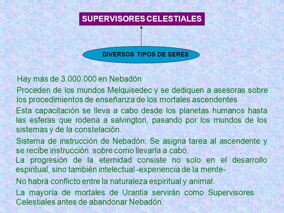 SUPERVISORES CELESTIALES DIVERSOS TIPOS DE SERES