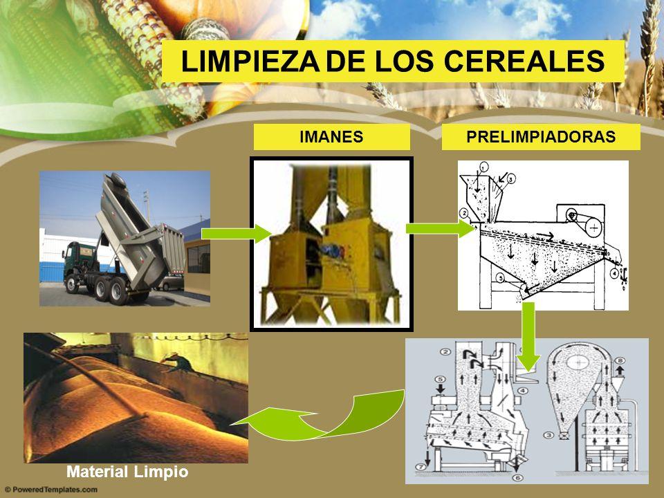 LIMPIEZA DE LOS CEREALES