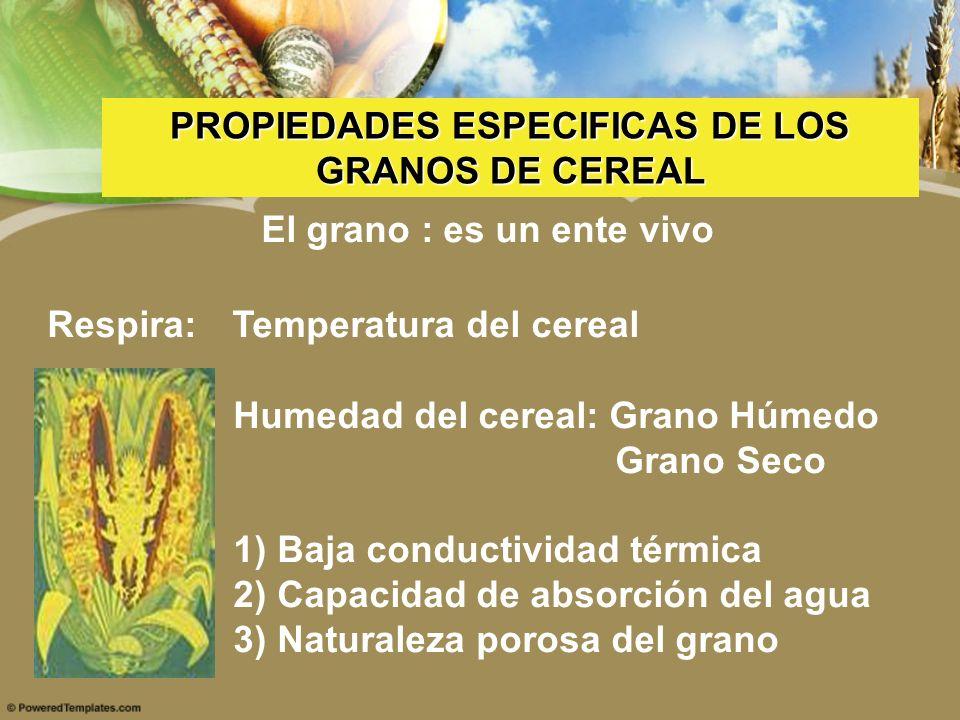 PROPIEDADES ESPECIFICAS DE LOS El grano : es un ente vivo
