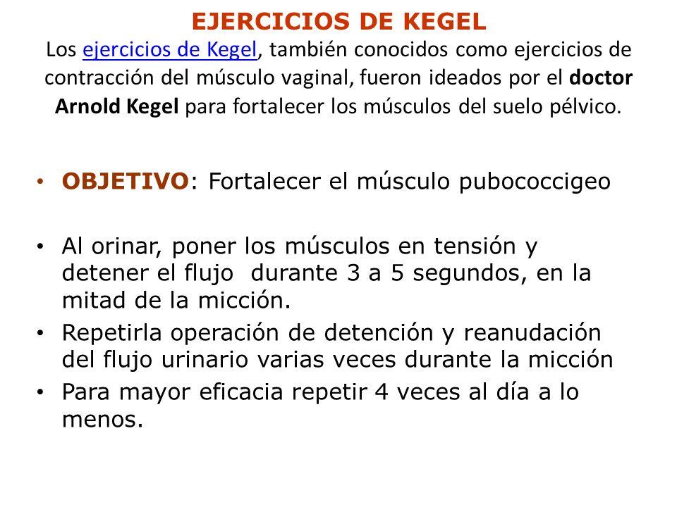EJERCICIOS DE KEGEL Los ejercicios de Kegel, también conocidos como ejercicios de contracción del músculo vaginal, fueron ideados por el doctor Arnold Kegel para fortalecer los músculos del suelo pélvico.