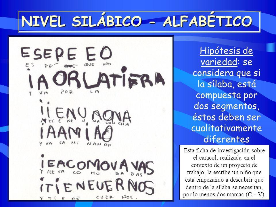 proceso de conceptualizaci u00d3n del sistema de escritura