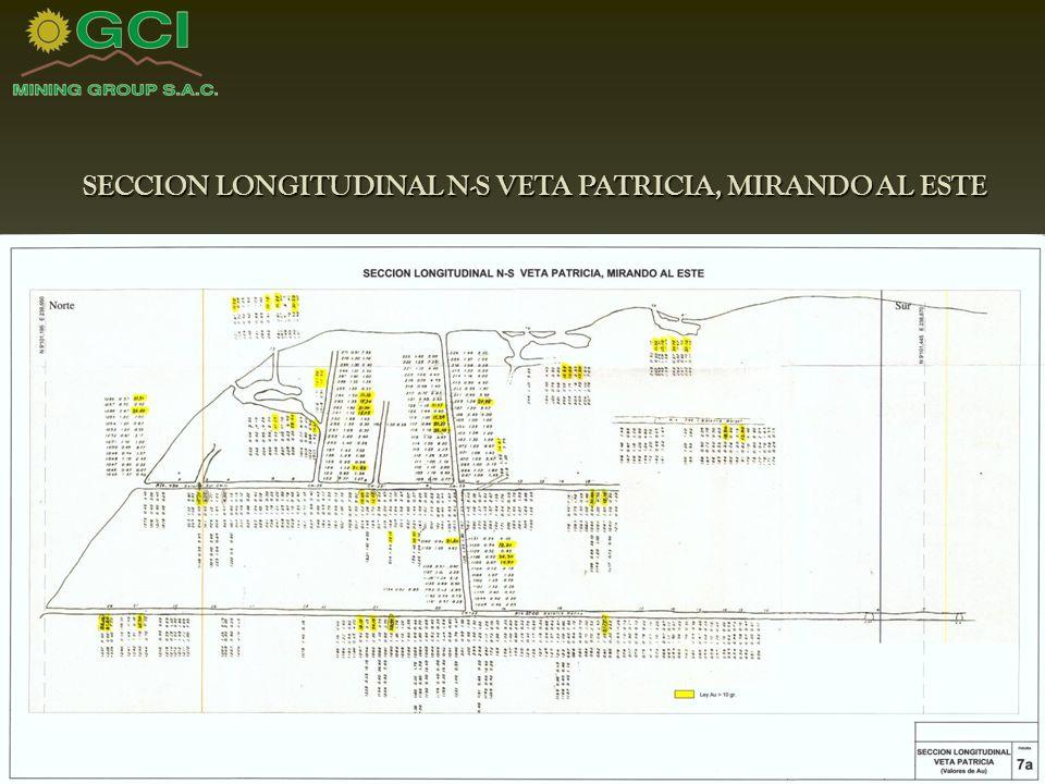SECCION LONGITUDINAL N-S VETA PATRICIA, MIRANDO AL ESTE