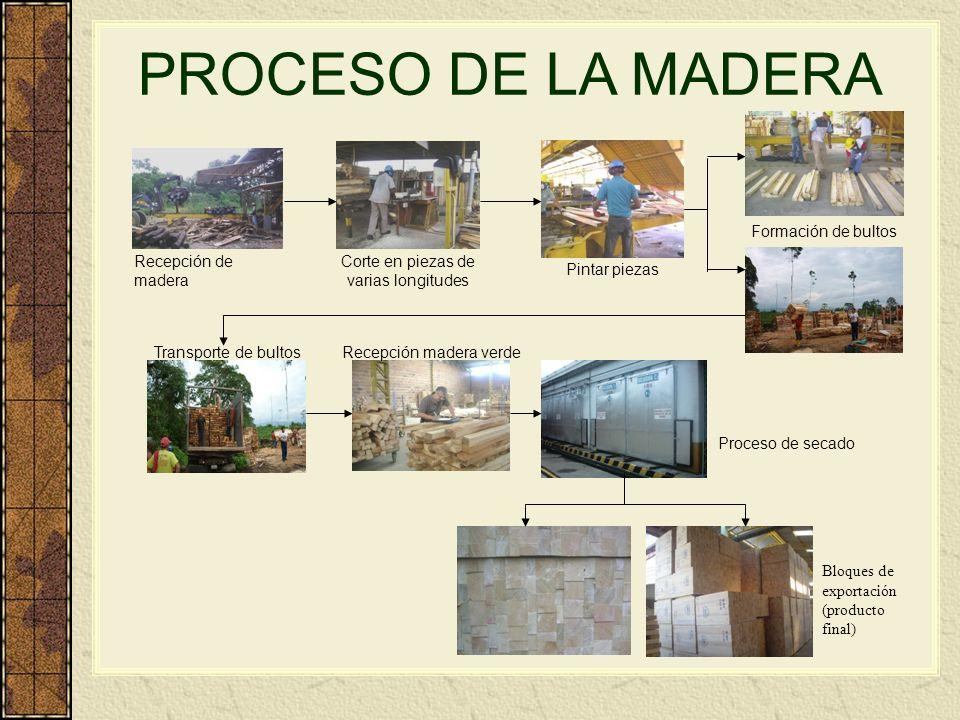 PROCESO DE LA MADERA Formación de bultos Recepción de madera