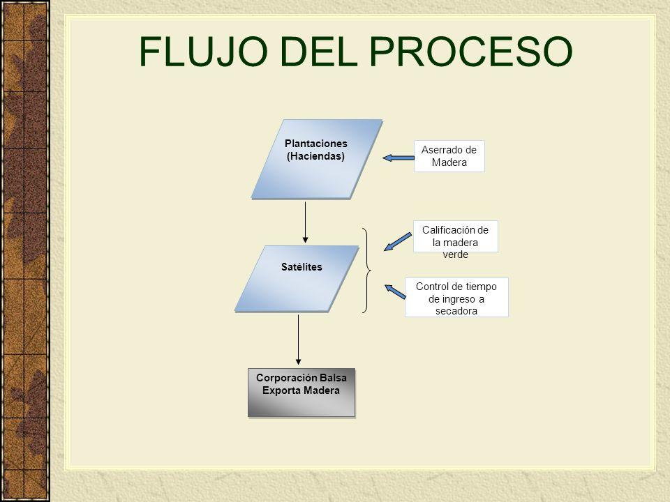 Plantaciones (Haciendas) Corporación Balsa Exporta Madera