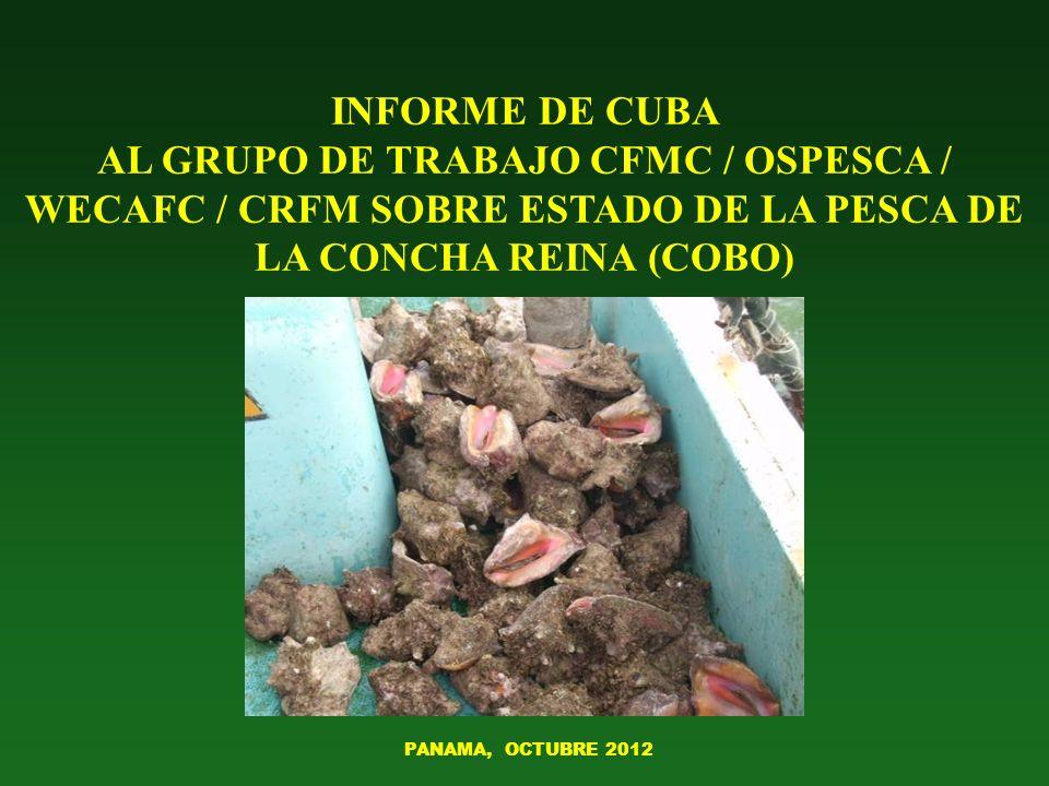 INFORME DE CUBA AL GRUPO DE TRABAJO CFMC / OSPESCA / WECAFC / CRFM SOBRE ESTADO DE LA PESCA DE LA CONCHA REINA (COBO)