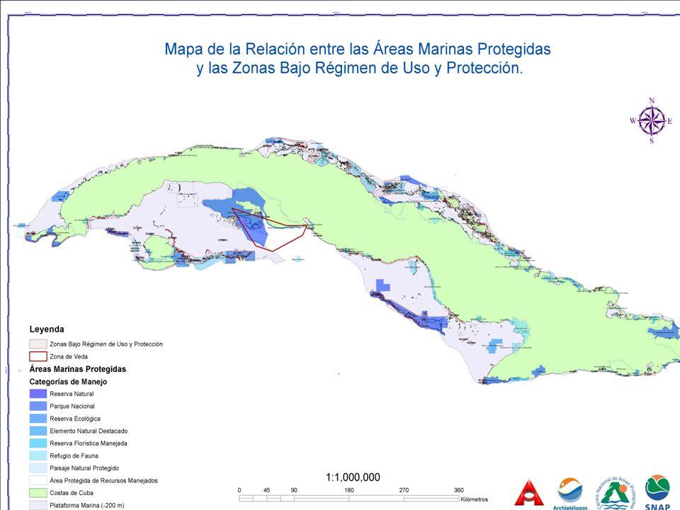 EMPRESA CIP PESQUERA ONIP REGULACION. PESQUERA CNGB A.A.CITES