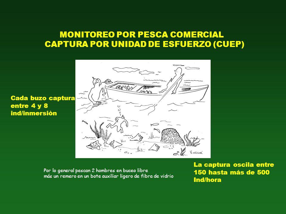 MONITOREO POR PESCA COMERCIAL CAPTURA POR UNIDAD DE ESFUERZO (CUEP)