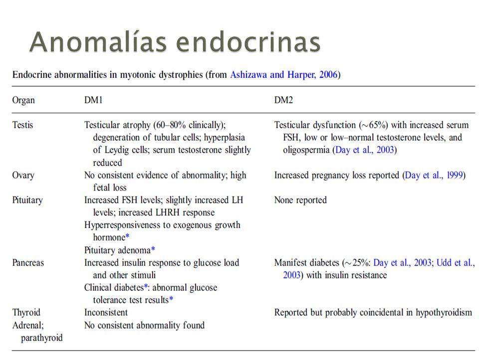 Anomalías endocrinas