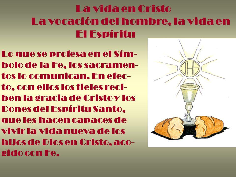 La vocación del hombre, la vida en El Espíritu