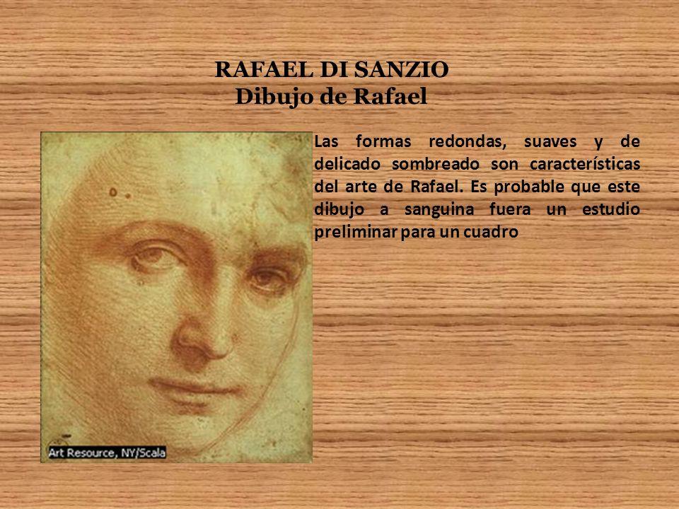 RAFAEL DI SANZIO Dibujo de Rafael