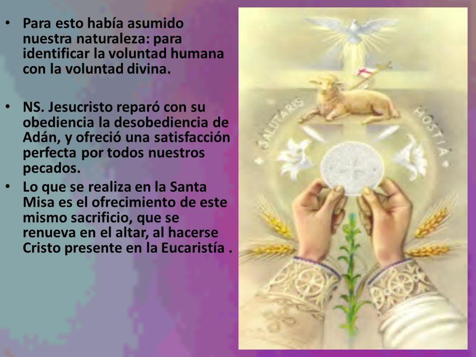 Para esto había asumido nuestra naturaleza: para identificar la voluntad humana con la voluntad divina.