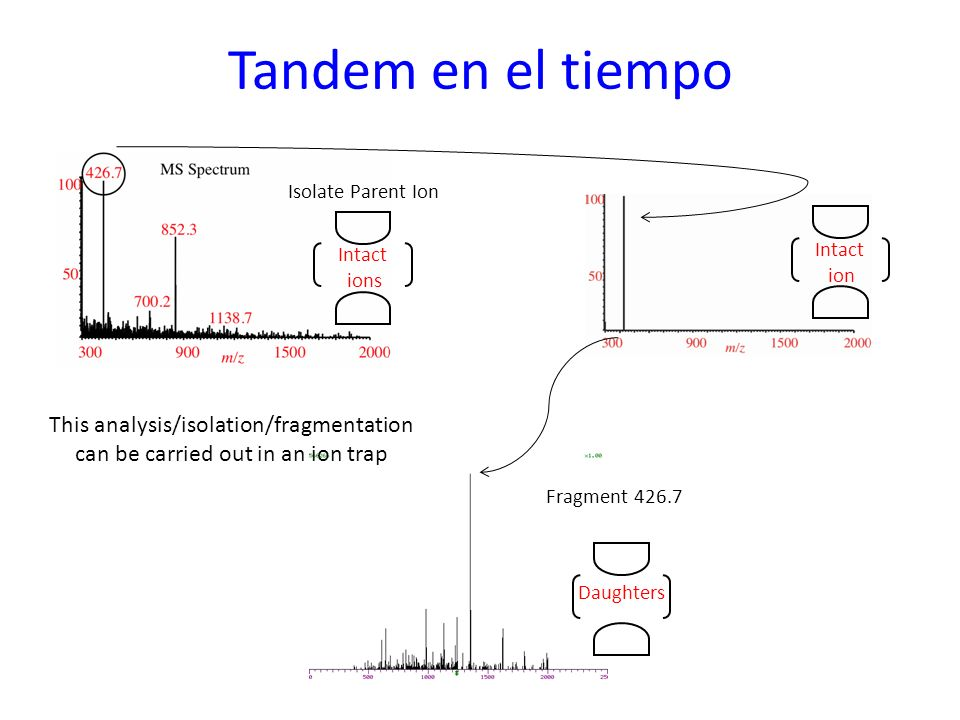 Tandem en el tiempo Isolate Parent Ion. Intact ions. Intact ion. This analysis/isolation/fragmentation can be carried out in an ion trap.