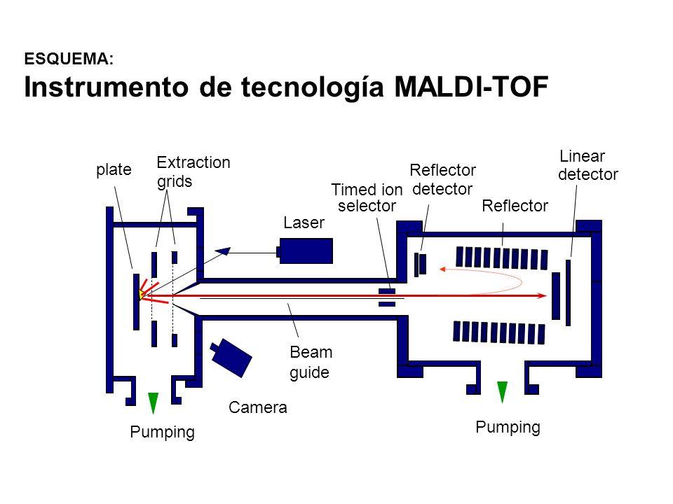 ESQUEMA: Instrumento de tecnología MALDI-TOF