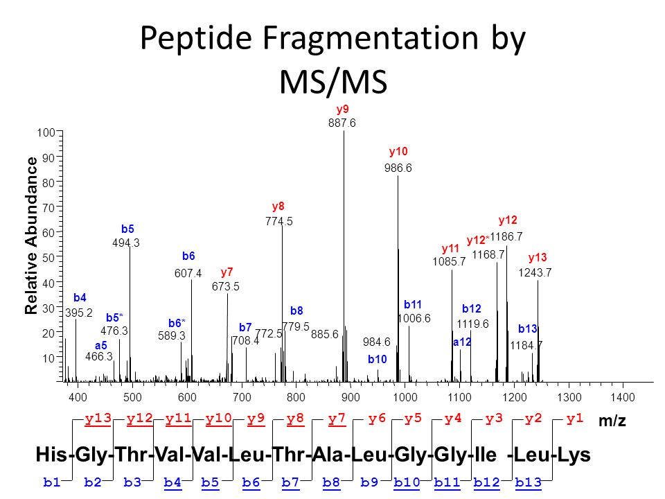 Peptide Fragmentation by MS/MS