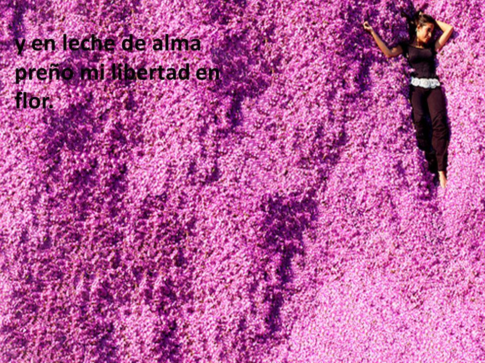 y en leche de alma preño mi libertad en flor.