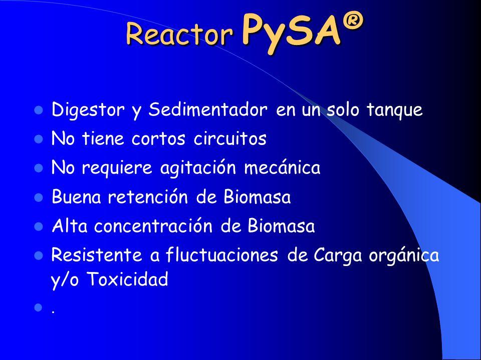 Reactor PySA® Digestor y Sedimentador en un solo tanque