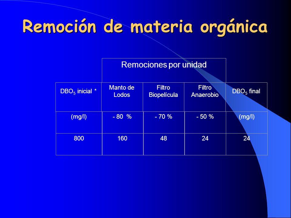 Remoción de materia orgánica