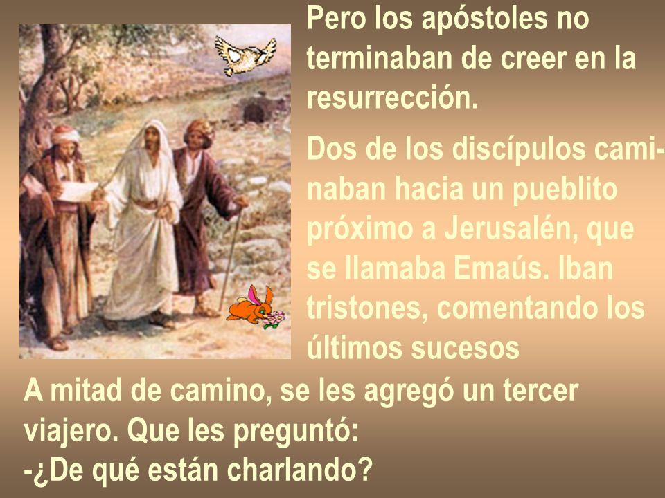 Pero los apóstoles no terminaban de creer en la. resurrección. Dos de los discípulos cami- naban hacia un pueblito.