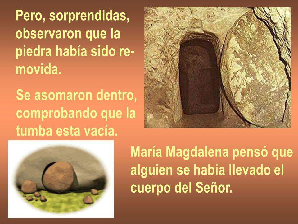 Pero, sorprendidas, observaron que la. piedra había sido re- movida. Se asomaron dentro, comprobando que la.
