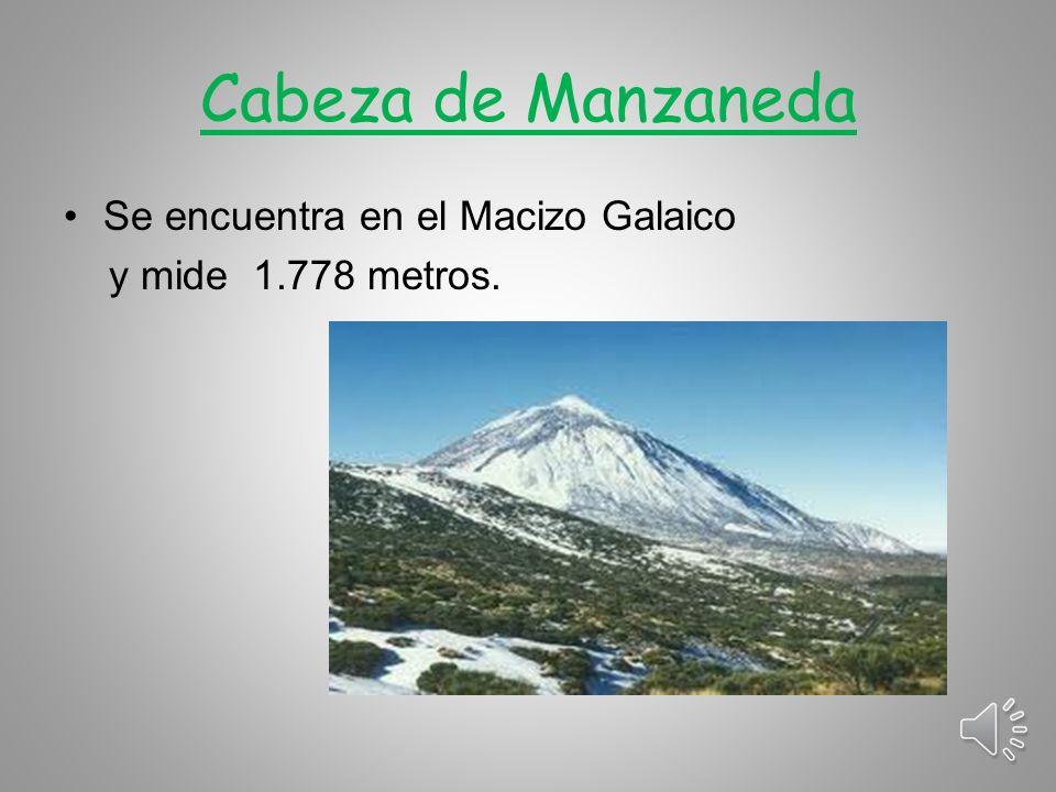 Cabeza de Manzaneda Se encuentra en el Macizo Galaico